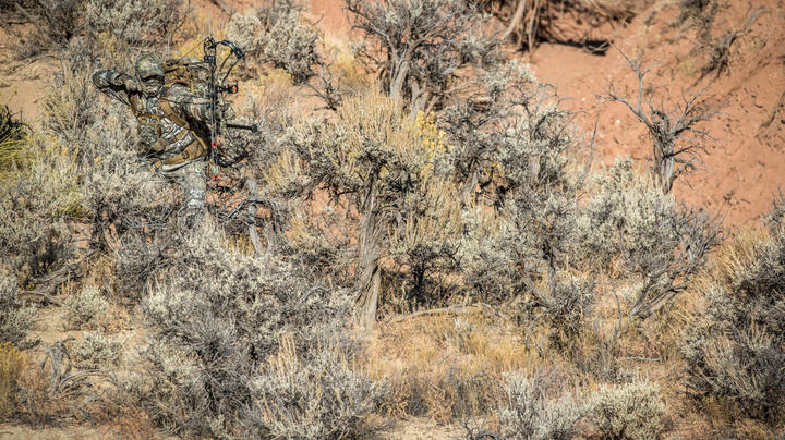 5 Tips for Bowhunting Desert Mule Deer Preview Image