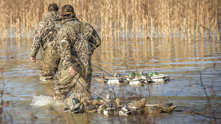 Are You Hauling Too Many Decoys? Preview Image