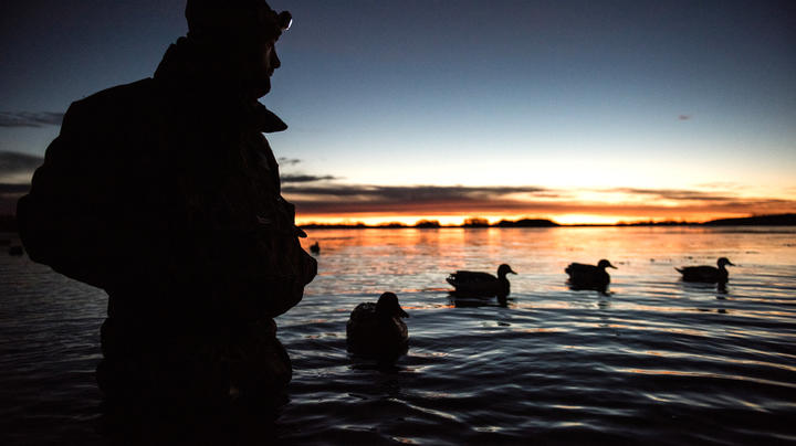 Poor Hunting Dominating the Pacific Flyway Preview Image