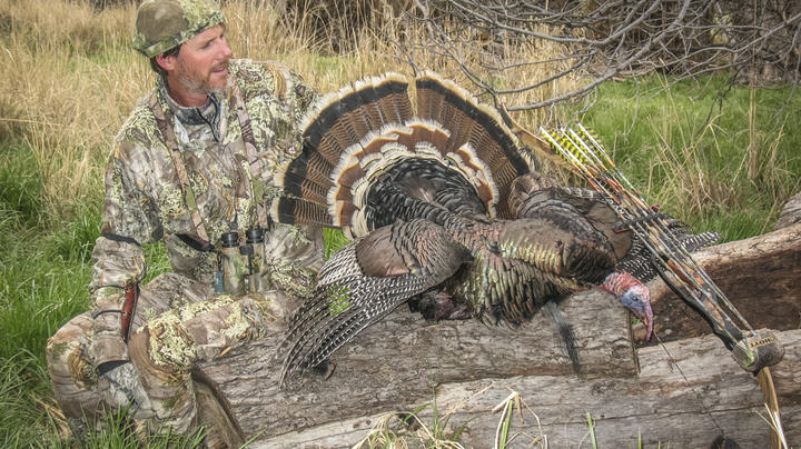 Backpack Hunting Public-Land Turkeys Preview Image
