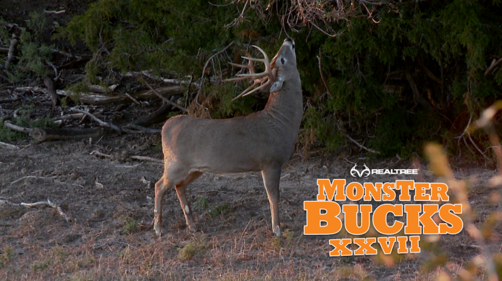 Monster Bucks 27: David Blanton Kills a Giant Kansas Deer Preview Image