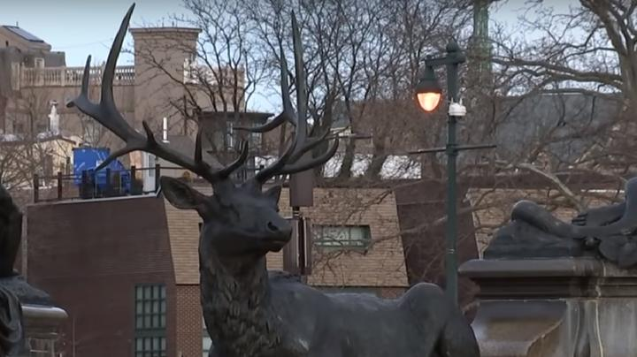 Man Impaled by Elk Statue Preview Image