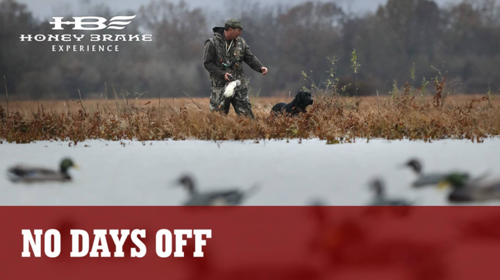 Honey Brake Experience on Realtree 365: 26,000 Acres and No Days Off Preview Image