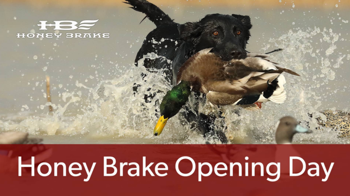 Honey Brake on Realtree 365: Opening Week at Honey Brake Preview Image