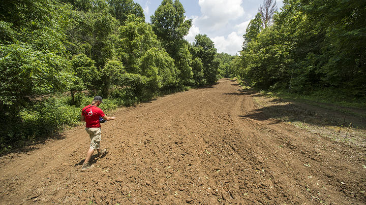 Problems and Solutions with Planting Food Plots in the Woods Preview Image