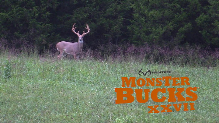 Monster Bucks 27: Biggest True Velvet 8-Pointer Ever Killed on Camera? Preview Image
