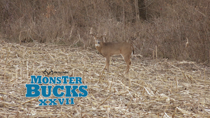 Monster Bucks 27: Tyler Rees Self Films Iowa Muzzleloader Hunt Preview Image