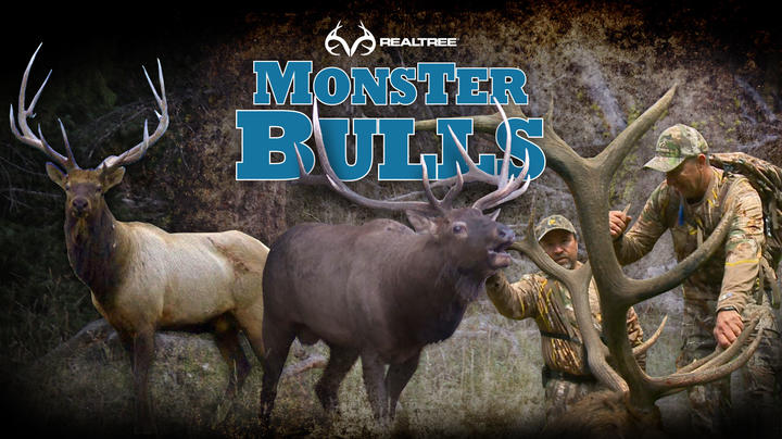 Realtree 365 Now Featuring Monster Bulls Preview Image
