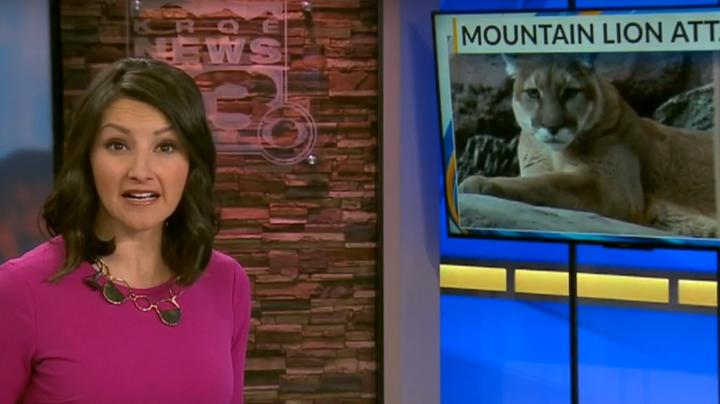 Runner Kills Mountain Lion With Bare Hands Preview Image