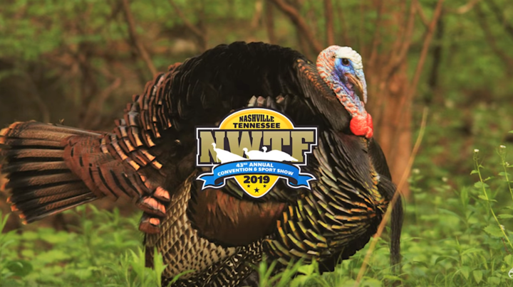 2019 NWTF Convention & Sport Show Highlight Video Preview Image