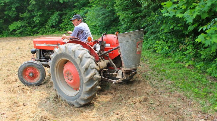 10 Best Food Plot Planting Tips Preview Image