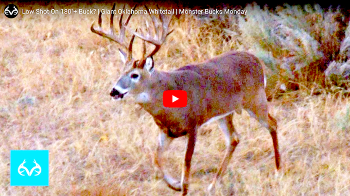 Monster Bucks: Bad Shot on 180-Inch Oklahoma Deer? Preview Image