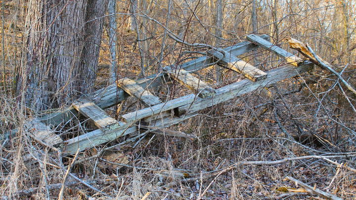 Traditional Treestands: The Lost Art of Wooden Ladder Stands Preview Image