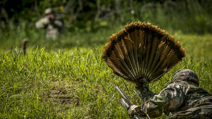 How to Be Safe While Turkey Hunting Preview Image