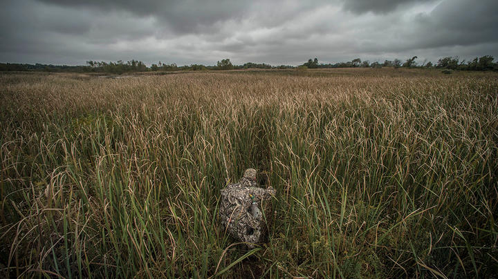 Is Competition Ruining Your Duck Hunting? Preview Image
