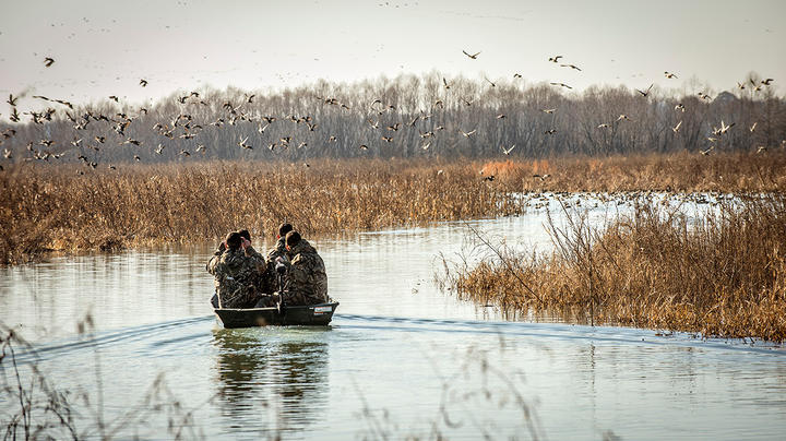 Is Southeastern Missouri the New Arkansas for Duck Hunters? Preview Image