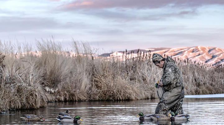 Weather Slows Pacific Flyway Waterfowl Hunting Preview Image