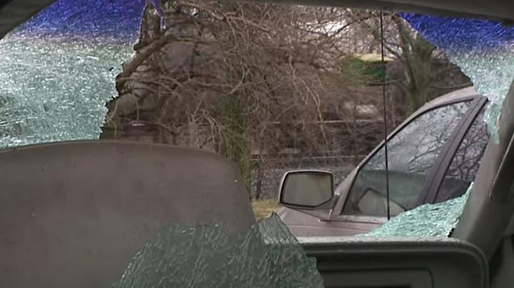 Deer Crashes Through Windshield, Kicks Man Repeatedly Preview Image