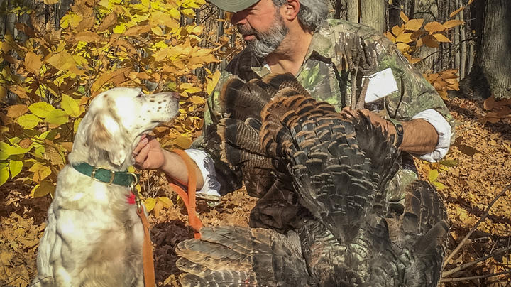 Is It Time to Rethink Fall Turkey Hunting? Preview Image