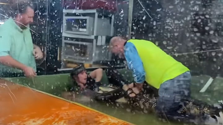 Watch: Alligator Attacks Handler During Child's Party at Utah Reptile Center Preview Image
