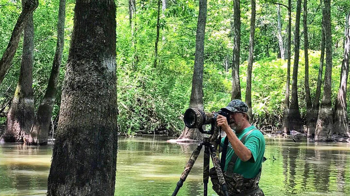 How to Take Better Duck Hunting Photos Preview Image