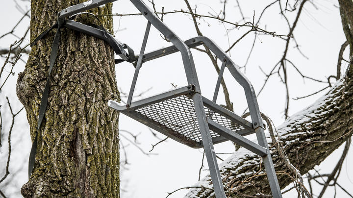 Is It Safe to Leave Treestands Out All Year? Preview Image