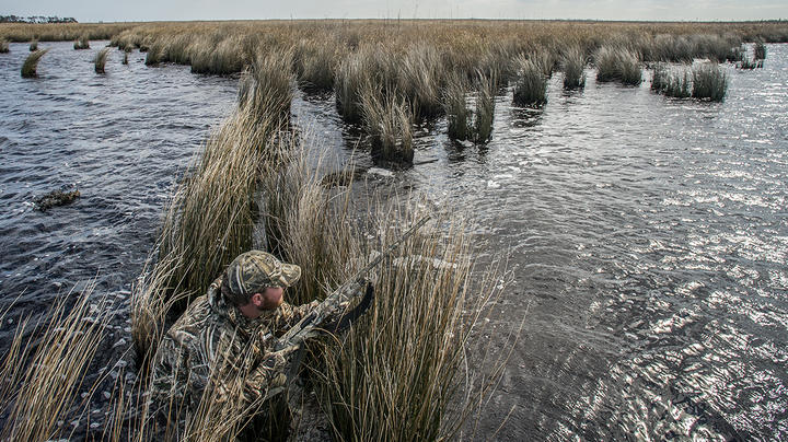 2021 Atlantic Flyway Duck Hunting Forecast Preview Image