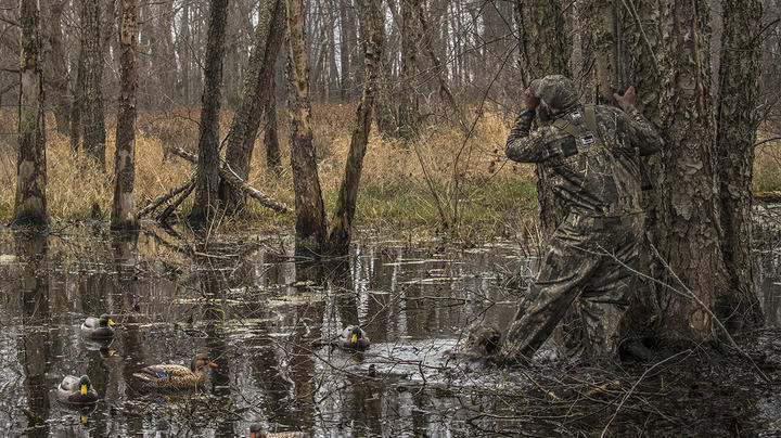 2021 Mississippi Flyway Duck Hunting Forecast Preview Image