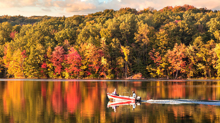 10 Reasons Why Fall Fishing is Better than Deer Hunting Preview Image