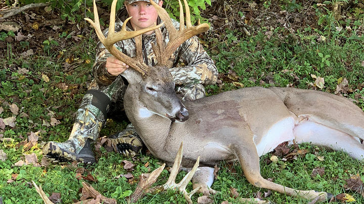 Buckeye Buck Named Hollywood Wakes Hunter from Catnap Preview Image