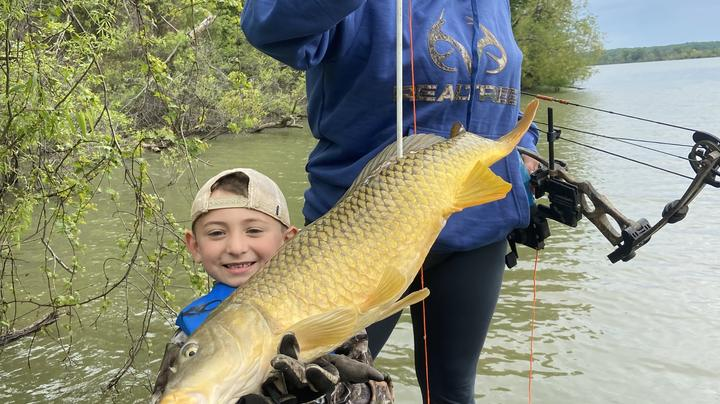 Bowfishing: 12 Fish Species to Target Preview Image