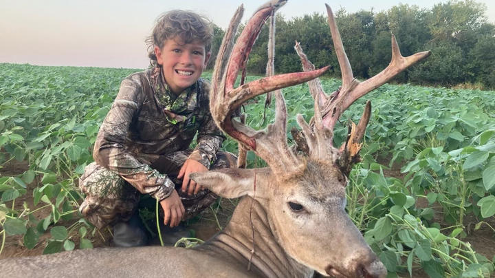 Little Brother Passes a Coyote, Scores on a Kansas Stud  Preview Image