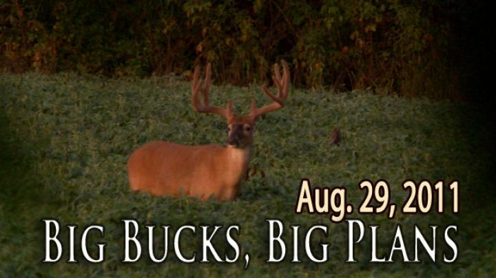 MW11.2: Big Bucks, Big Plans Preview Image