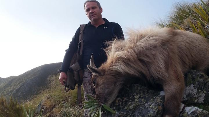 Tahr Hunt In New Zealand Preview Image