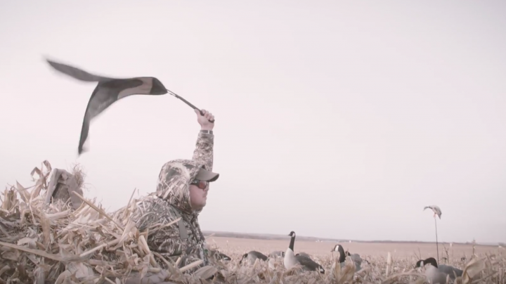 The Fowl Life Season 10 Teaser Preview Image