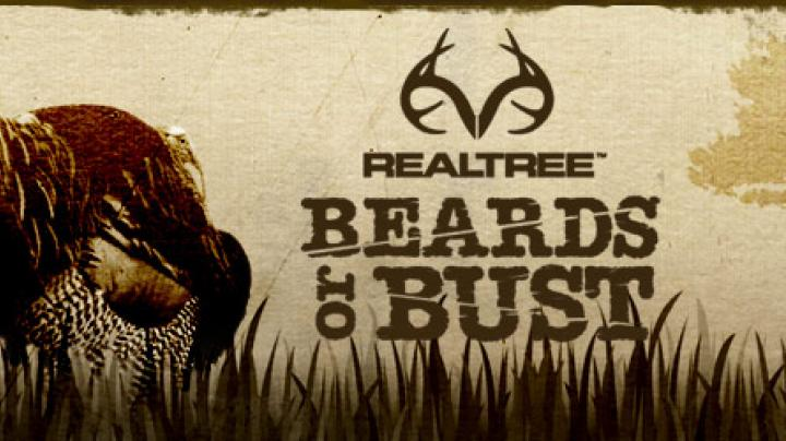 Beards or Bust: Bowhunting Turkeys Preview Image