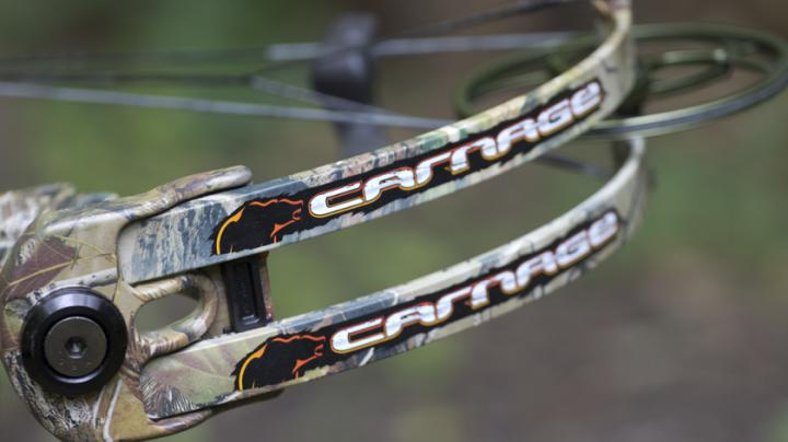Six Sweet New Bows for 2011 Preview Image