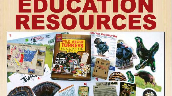 NWTF: Turkey Teacher Preview Image