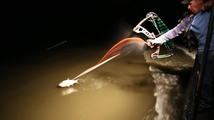 Bowfishing Show: Flying Fish Sticks Preview Image