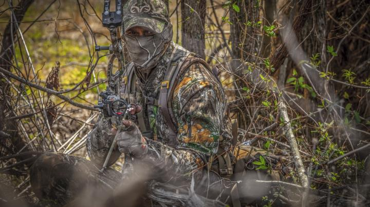 Maryland Spring Turkey Kill Down from Last Year Preview Image