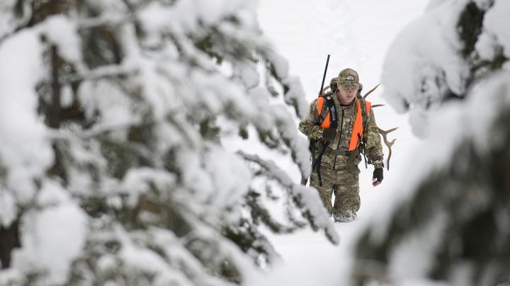 10 Elk Hunting Tips from the RMEF Preview Image