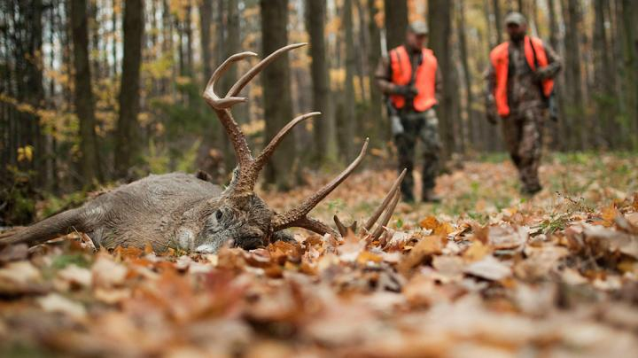 The Great Debate: Firearms Hunting Seasons During the Rut Preview Image