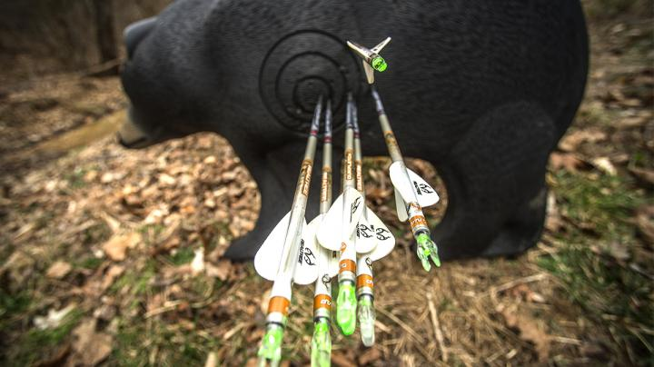 3 Tips for Shooting 3D Archery Tournaments Preview Image