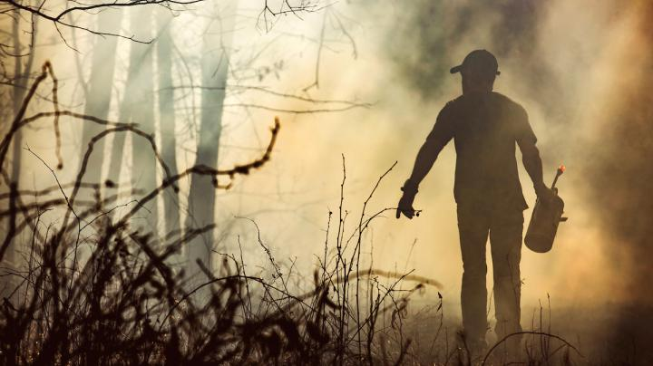 3 Cost-Effective Land Management Tips for Hunters Preview Image