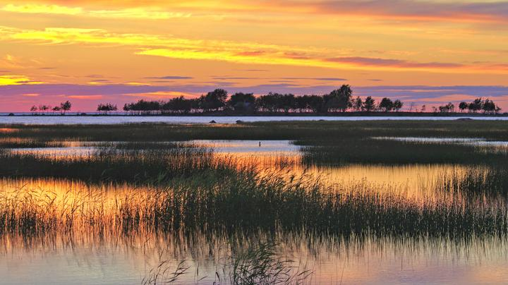 Buying or Leasing Waterfowl Hunting Property Preview Image