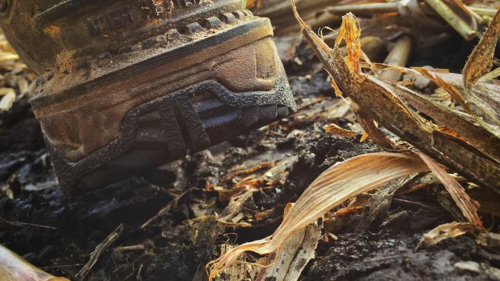 Irish Setter Hunting Boots Preview Image