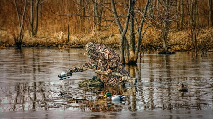 Switch Up Setups to Shoot More Ducks and Geese Preview Image