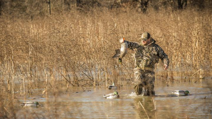 Atlantic Flyway Waterfowling Changes Approved Preview Image