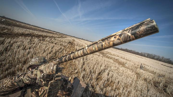 Waterfowl Shotguns: 5 Critical Features Preview Image