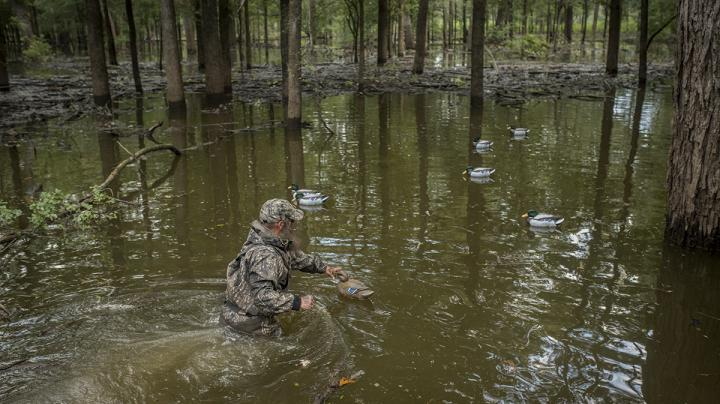 7 Reasons Public Waterfowl Hunting is Better than You Think Preview Image